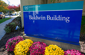 Baldwin Building